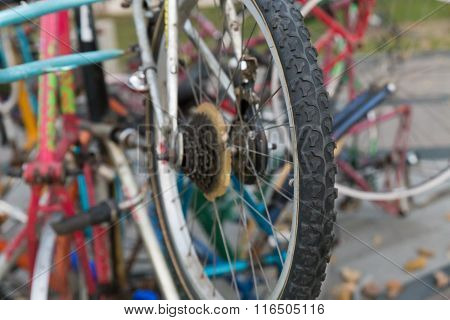 Old Bicycle Wheel