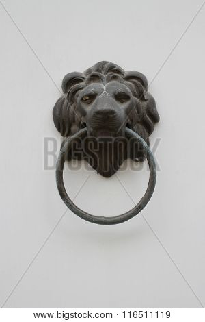 The Lion Head Door Handles