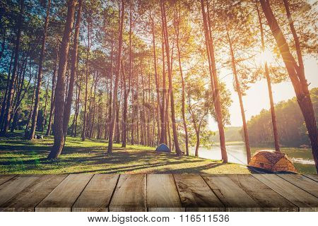 Pine Tree Forest And Wood Plank Floor With Sunrise. Vintage Style.