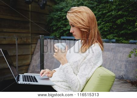 Woman reading news in network via laptop computer while enjoying cappuccino in cozy restaurant