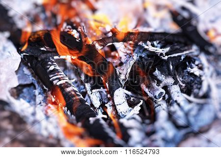 Beautiful burning bonfire in the camp, preparing charcoal for barbecue, natural fuel, abstract fire natural background