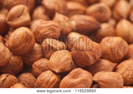 Close Up Shot Of Hazelnuts