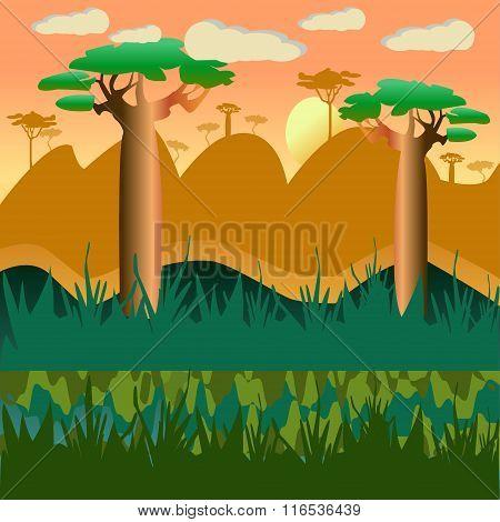 Natural Landscape  Background With Baobab