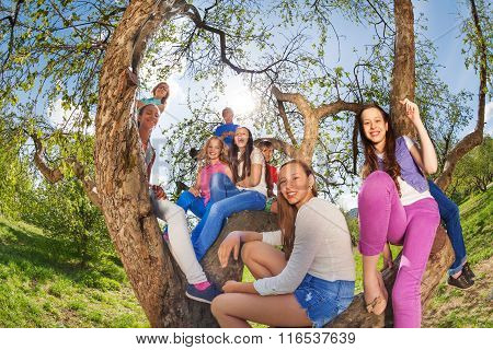 Fisheye view of smiling teenagers sitting on  tree