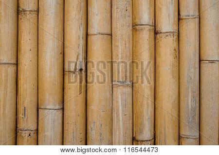 Bamboo Texture Pattern Backgroung Horizontal