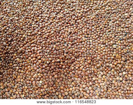 Red Quinoa Vegetables