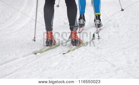 Close Up Of Speedy Colorful Skies, Feet And Legs Of A Cross Country Skiers