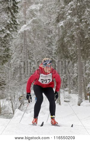Cross Country Skiing Woman In The Beautiful Forest
