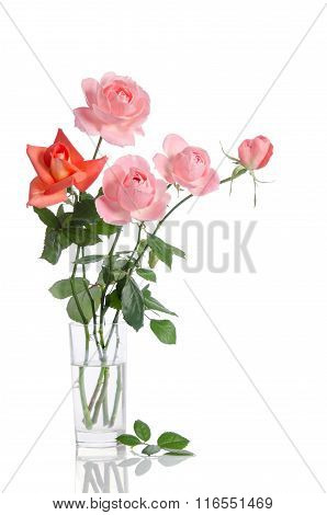 Beautiful Bouquet Of Roses In A Glass Vase Isolated On White Background