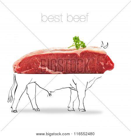 Raw Rump Steak With Bull Sketch On White