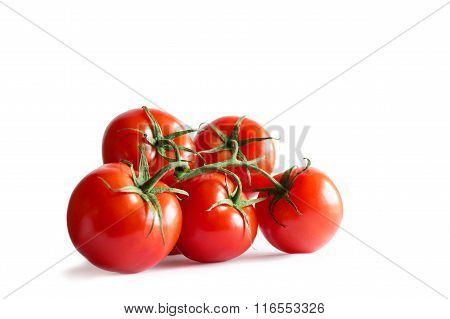 Branch of fresh red tomatoes on isolated white backround