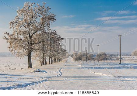 Winter landscape with country road in Sursko-Mykhailyvka village Ukraine