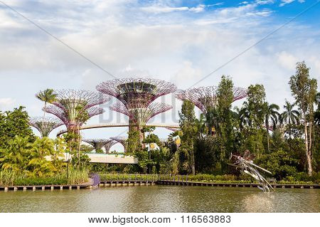 Gardens By The Bay Nature Park In Singapore