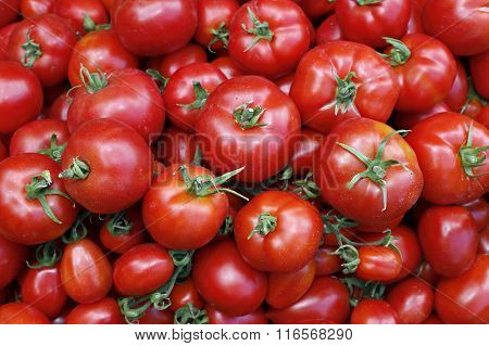 Many Of Juicy Ripe Red Tomatoes