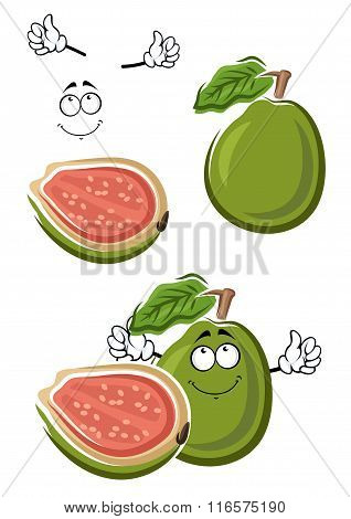 Ripe cartoon green guava fruit