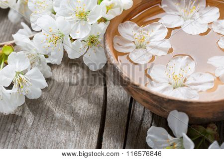 Floating flowers ( Cherry blossom)   in  clay  bowl.