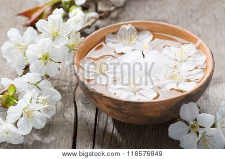 Floating flowers ( Cherry blossom)  and burning candle in clay    bowl.