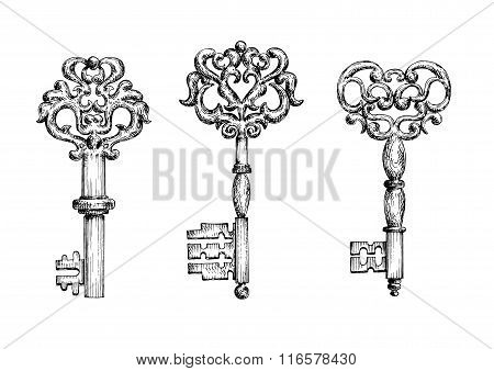 Vintage ornate skeleton keys in sketch style