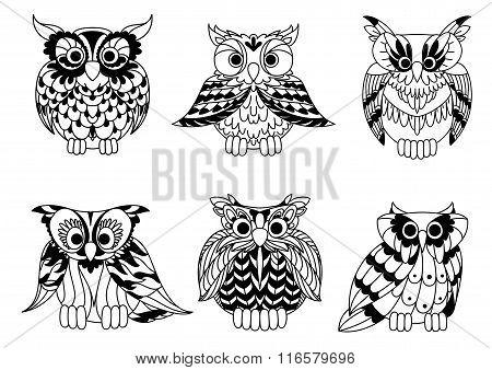 Cartoon outline owl birds set