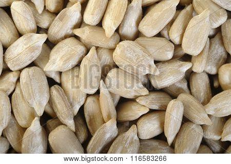 Peeled Sunflower Seeds Background