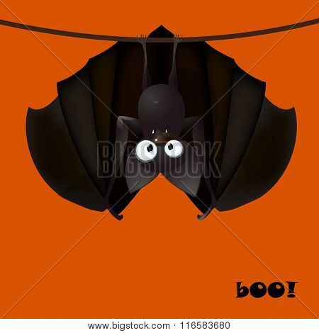 bat funny  - Halloween