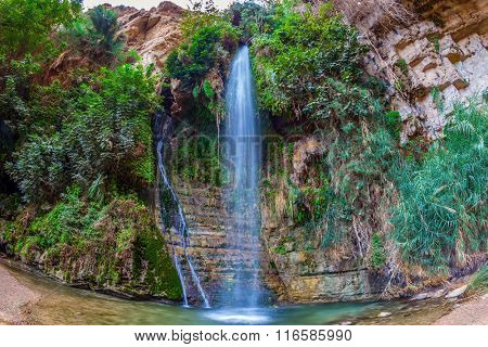Falls Shulamit falls into a shallow pond with emerald water. Ein Gedi - Nature Reserve and National Park, Israel