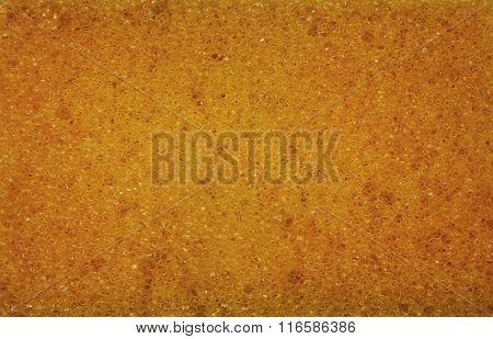 Close View On Sponge Structure