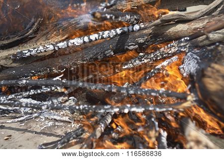 Fire close up. Wood and sticks in fire. live coals on sand.