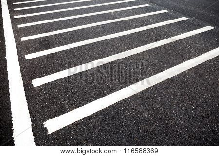 White Line On Road Texture