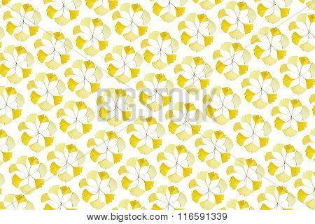 Abstract Pattern Of Natural Yellow Ginkgo Leaves In Circles