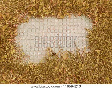 Manhole Detail Vintage