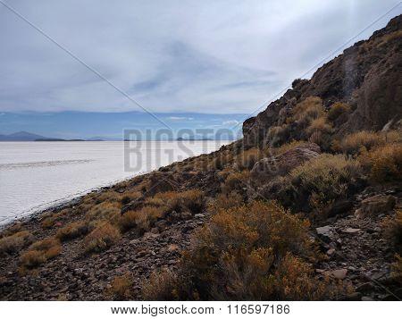 Isla Del Pescador At Salar De Uyuni
