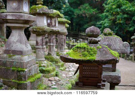 Kasuga Taisha Shrine's Lanterns