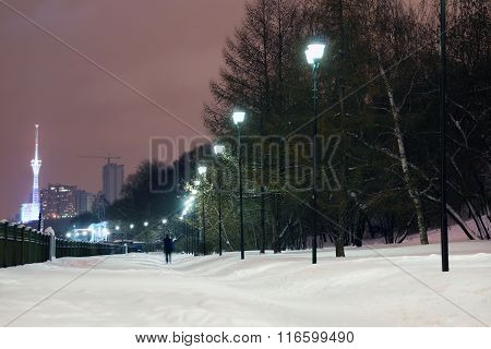 Lanterns Near Green Trees On Quay With White Snow At Winter Evening In City