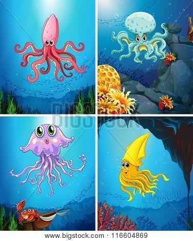 Sea animals under the sea illustration