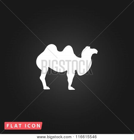 Camel flat icon