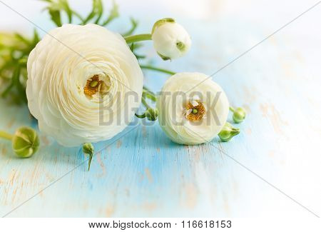 Beautiful bunch of flowers