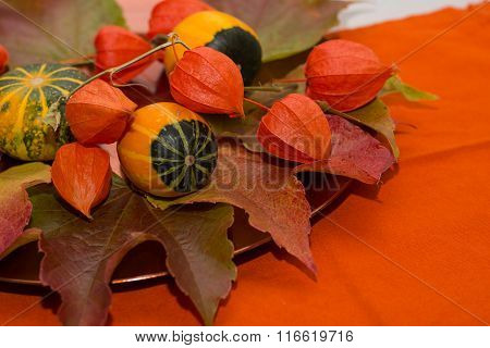 Autumn Decoration - Decorative Pumpkin And Bladder Cherry