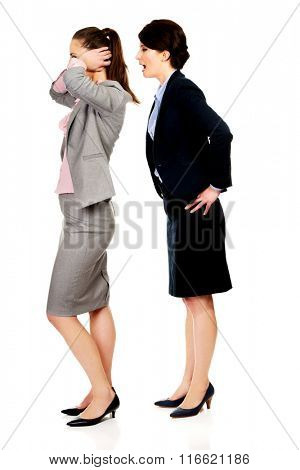 Businesswoman screaming on her partner.