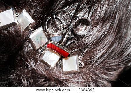 Silver On Fur