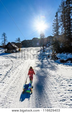 Girl Is Pulling Snow Sledge In Ski Resort  Wearing Winter Clothes