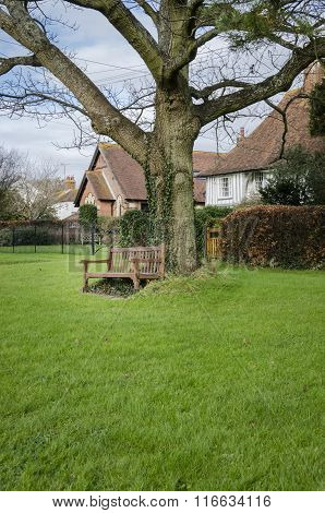 Bench Under A Tree On A Village Green In Kent