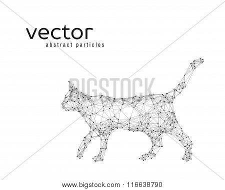 Abstract Vector Illustration Of Cat