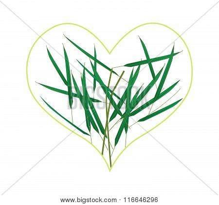 Fresh Green Grass In A Heart Shape
