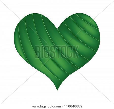 Green Banana Leaf In A Beautiful Heart