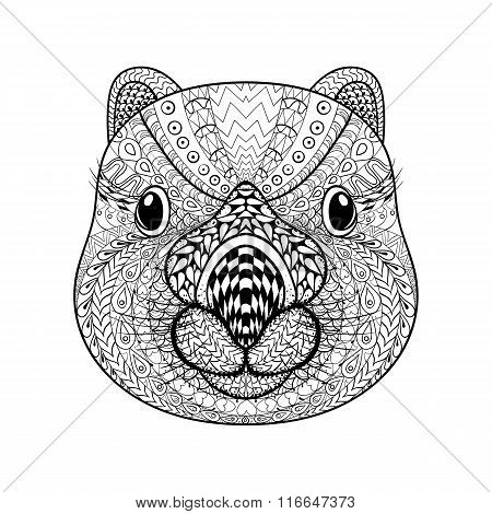 Hand drawn tribal Wombat face, animal totem for adult Coloring P