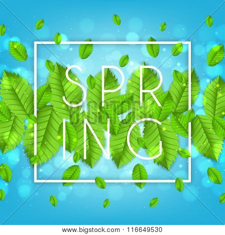 Spring Nature Banner With Leafs