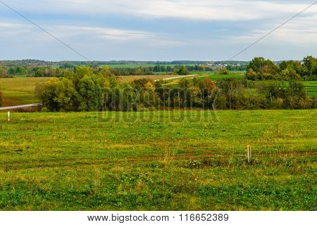 Summer landscape in the plain