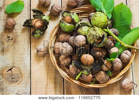 Walnuts in green husks with leaves