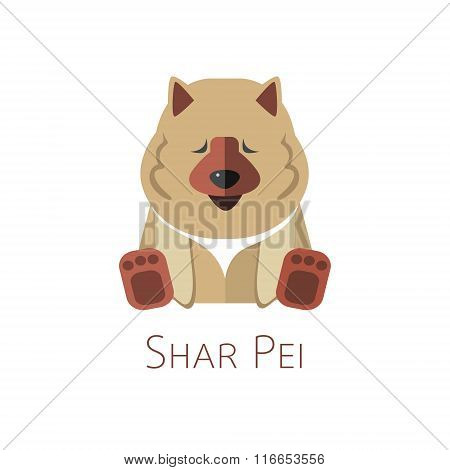 Shar Pei. Funny cartoon character